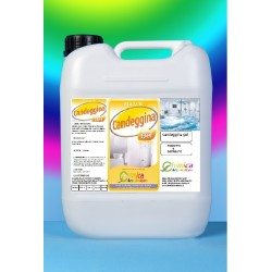 Bleach candeggina gel kg.10